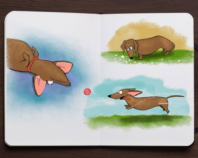 Schlitterbahn children's book illustrations